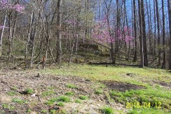 Snatch Creek of Little Willard